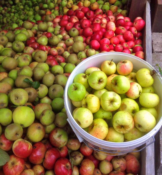 Apple Day – Saturday 8th October 2016