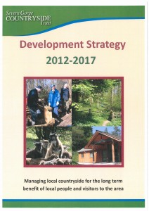 Development Strategy Front Page