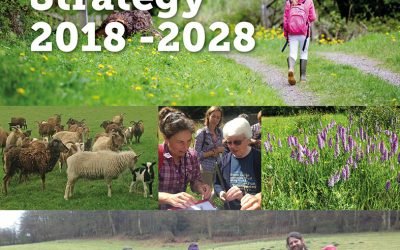 Development Strategy 2018-2028
