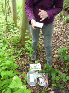 mighty oak geocache sutton woods